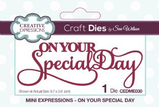 Mini Expressions Collection - On Your Special Day Die